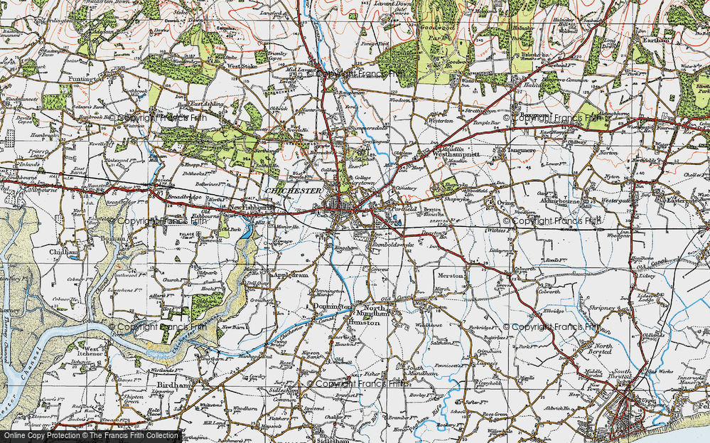 Old Map of Whyke, 1919 in 1919