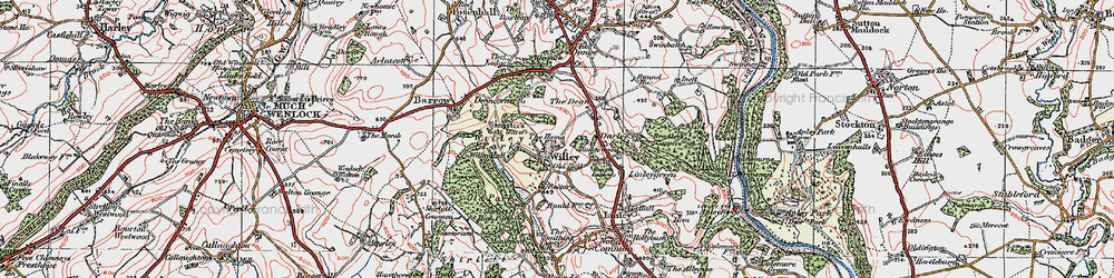 Old map of Willypark Wood in 1921