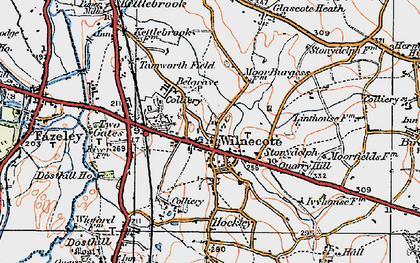 Old map of Wilnecote in 1921
