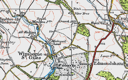 Old map of Wimborne St Giles in 1919