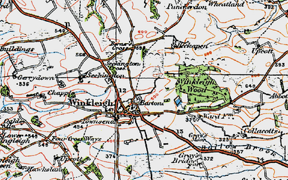Old map of Winkleigh Wood in 1919