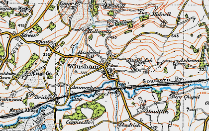 Old map of Winsham in 1919