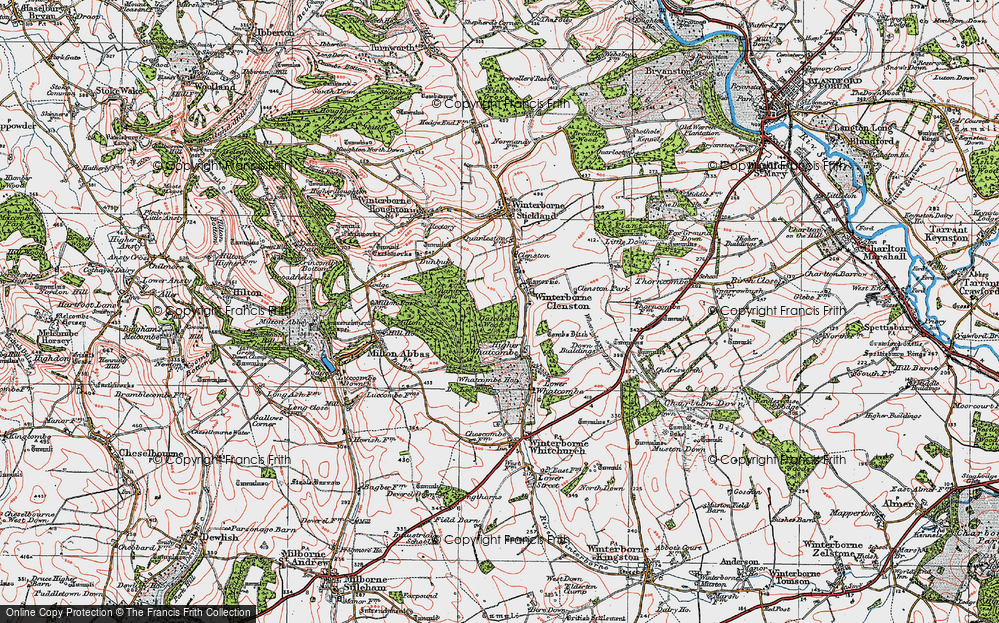 Old Map of Historic Map covering Whatcombe Wood in 1919