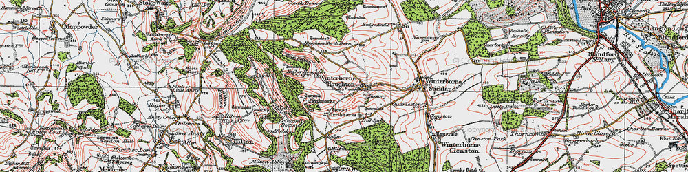 Old map of Winterborne Houghton in 1919
