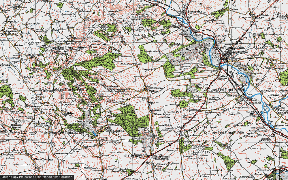 Old Map of Winterborne Stickland, 1919 in 1919