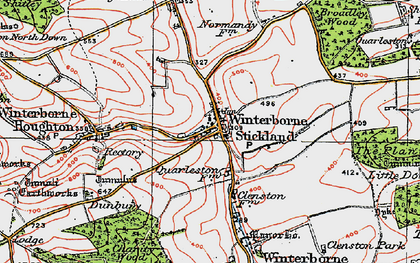 Old map of Winterborne Stickland in 1919