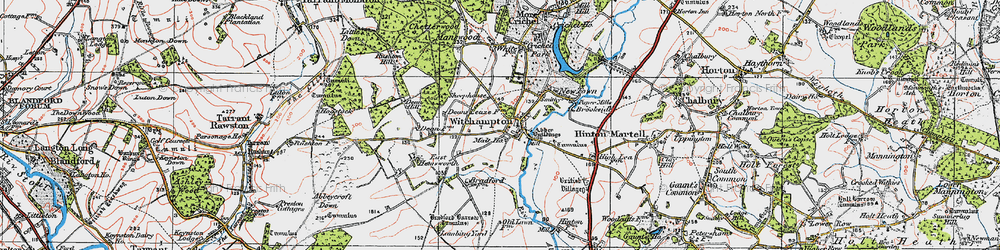 Old map of Witchampton in 1919