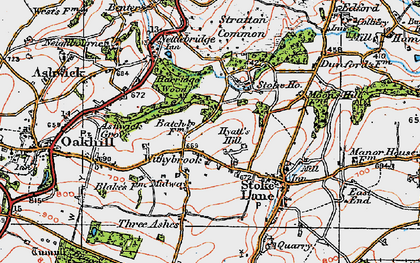 Old map of Withybrook in 1919
