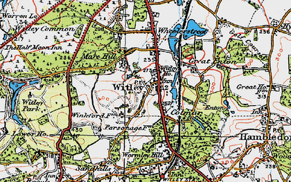 Old map of Witley in 1920