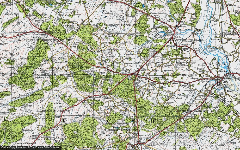 Wittensford, 1919