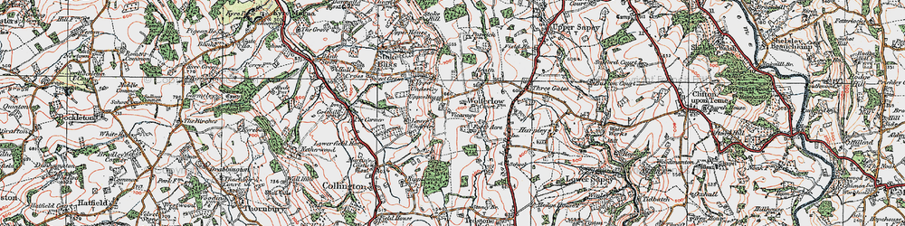 Old map of Wolferlow in 1920