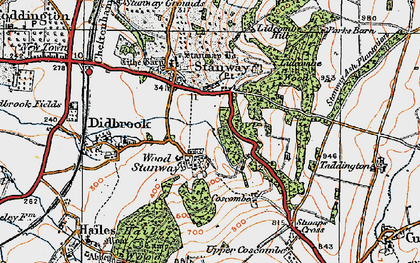 Old map of Wood Stanway in 1919