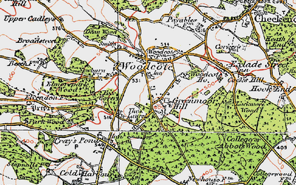 Old map of Woodcote in 1919