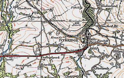 Old map of Woodland in 1919
