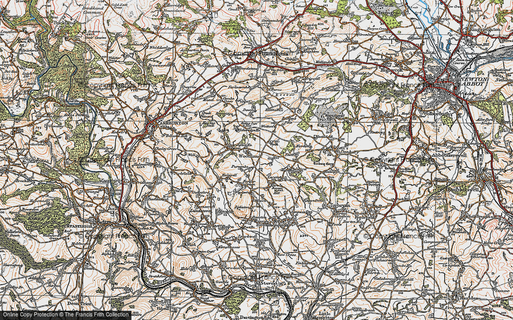 Old Map of Woodland, 1919 in 1919