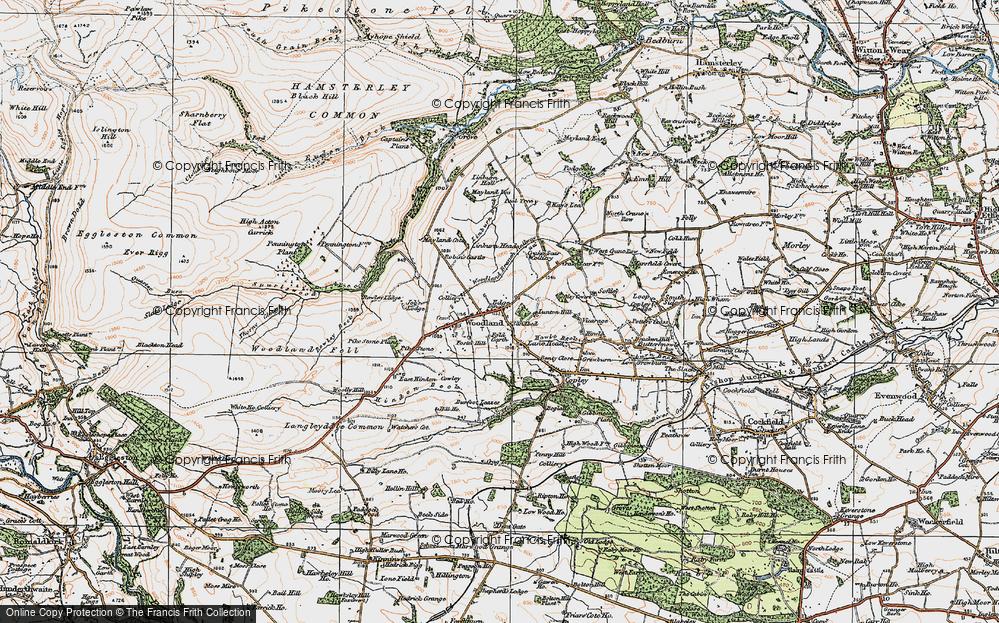 Woodland, 1925