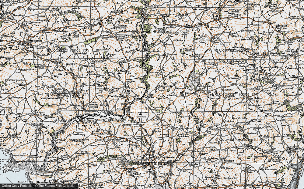 Old Map of Woodleigh, 1919 in 1919