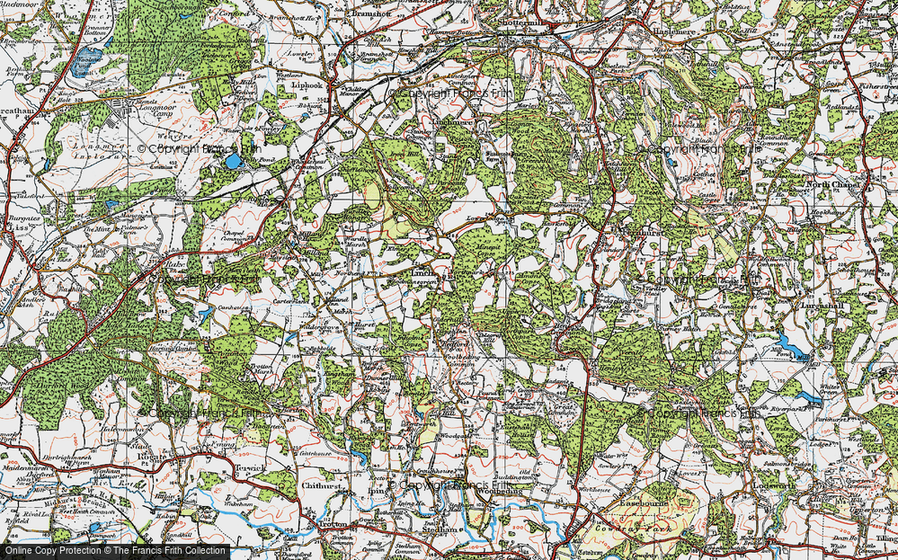 Old Map of Woodmansgreen, 1919 in 1919