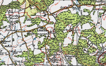 Old map of Woodmansgreen in 1919