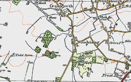 Old map of Woodrising Wood in 1921