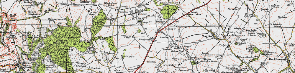 Old map of Woodyates in 1919