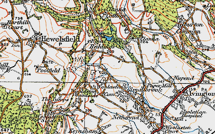 Old map of Woolaston Common in 1919