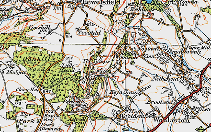 Old map of Woolaston Slade in 1919