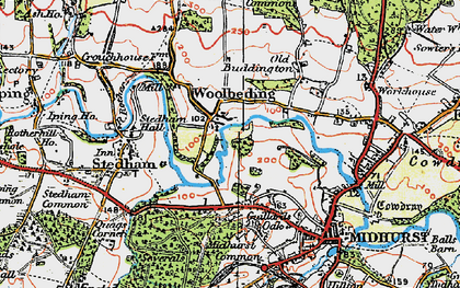 Old map of Woolbeding in 1919