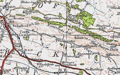 Old map of Woolgarston in 1919