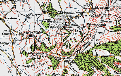 Old map of Woolland in 1919