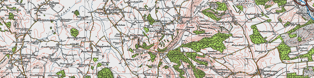 Old map of Woolland Hill in 1919