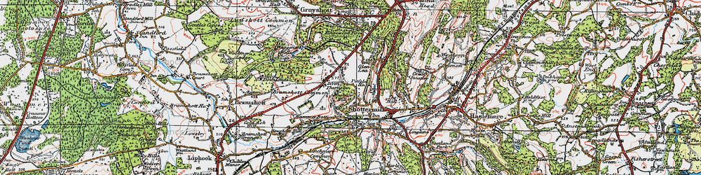 Old map of Woolmer Hill in 1919