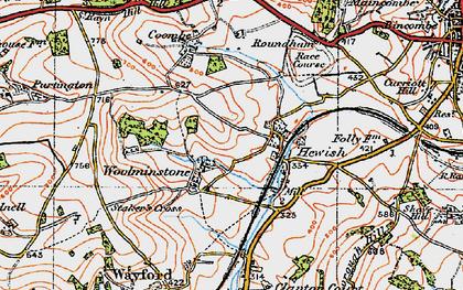 Old map of Woolminstone in 1919