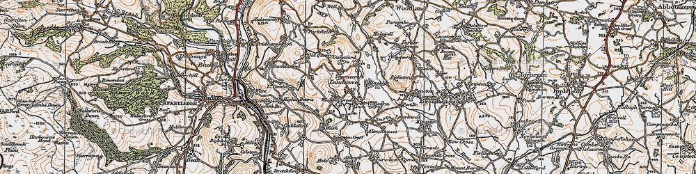 Old map of Woolston Green in 1919