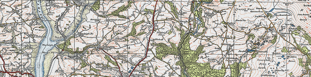 Old map of Woolwell in 1919