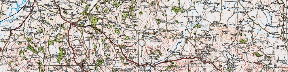 Old map of Wootton Fitzpaine in 1919