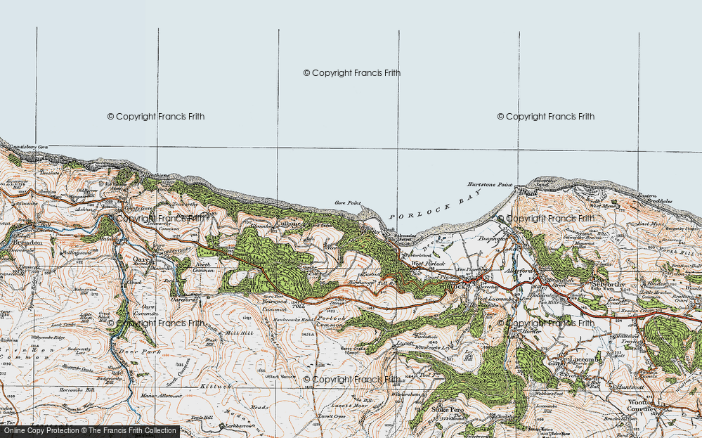 Old Map of Historic Map covering Yearnor Wood in 1919