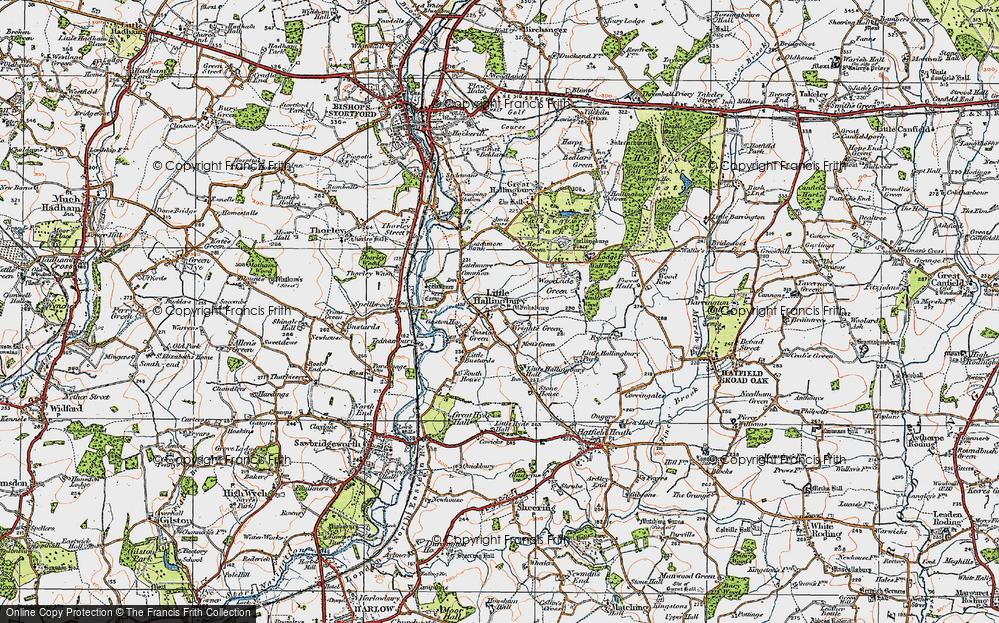 Wright's Green, 1919