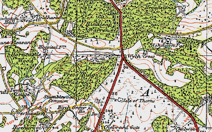Old map of Wych Cross Place in 1920