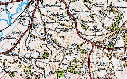 Old map of Wyke Green in 1919