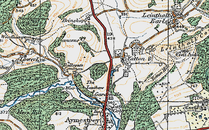 Old map of Yatton Hill in 1920