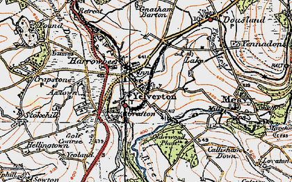 Old map of Yelverton in 1919