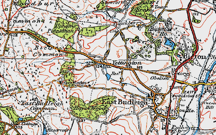 Old map of Hayes Barton in 1919