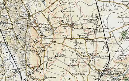 Old map of Albany in 1901-1904