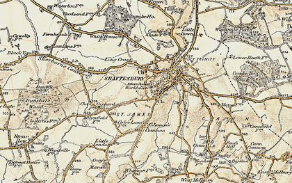 Old map of Alcester in 1897-1909