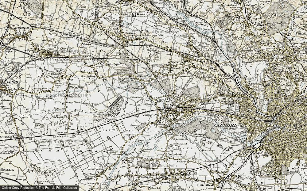 Alder Forest, 1903