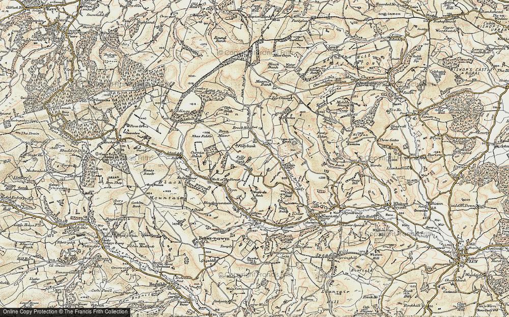 Ale Oak, 1901-1903