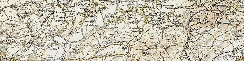 Old map of Willwife Wood in 1903