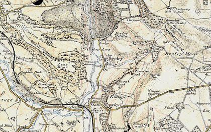 Old map of Limetree Wood in 1902-1903