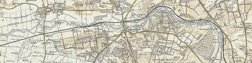 Old map of Wiltonhill Wood in 1901